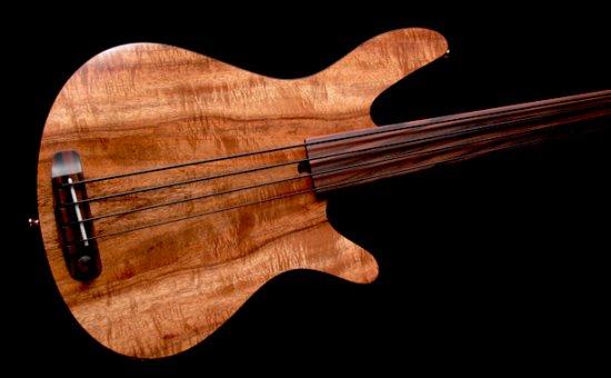 minimalistic bass guitar