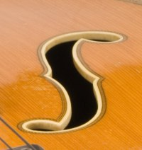 archtop f-shaped holes