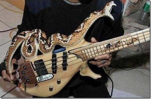 outrageous-guitar-2